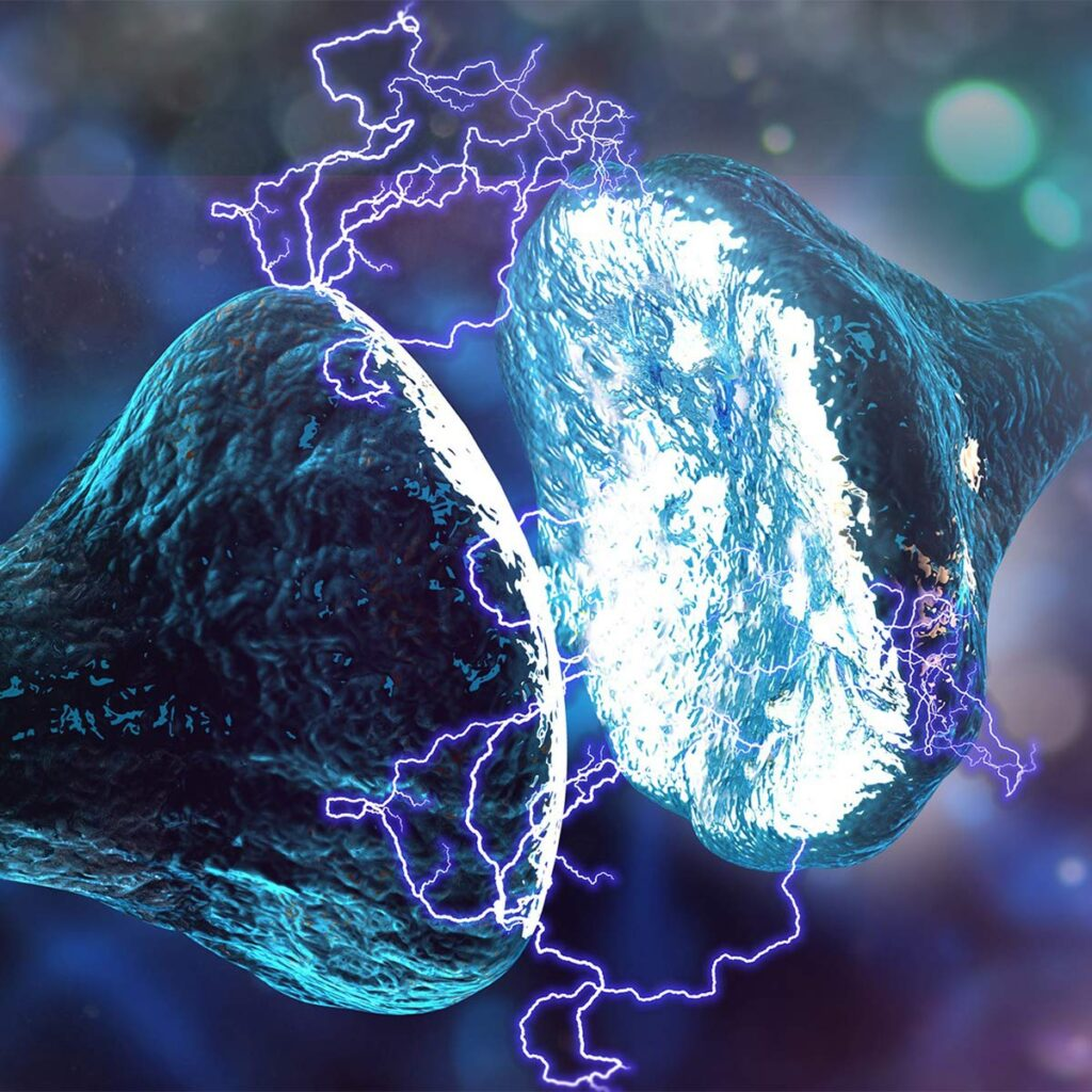 kuantum telepati, sinaps